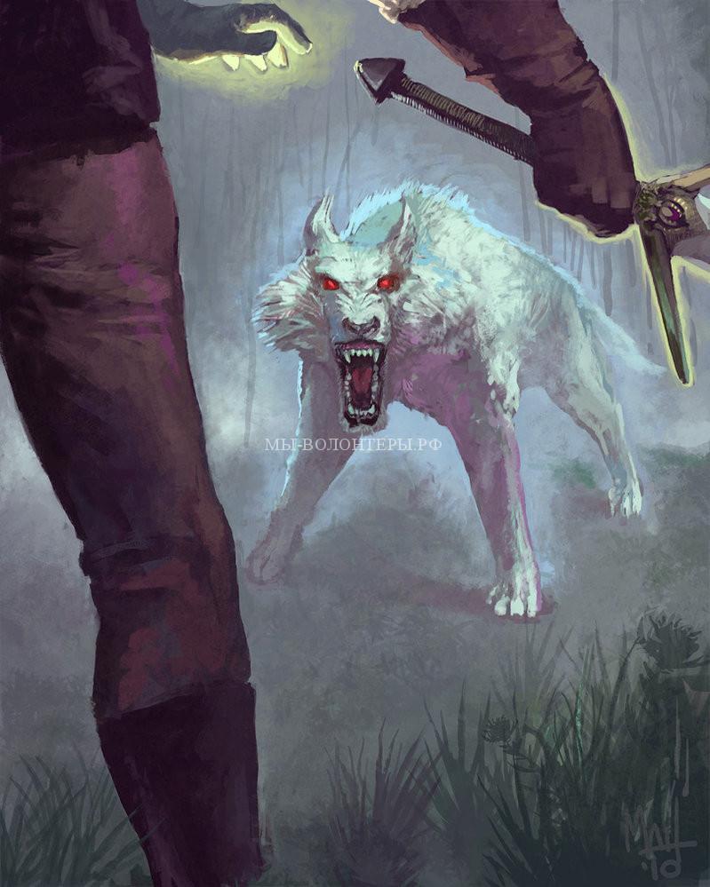 волки-викинги