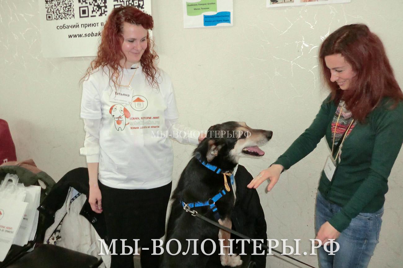 Гоша в магазине Приюта Щербинка, знакомится и одаряет собой