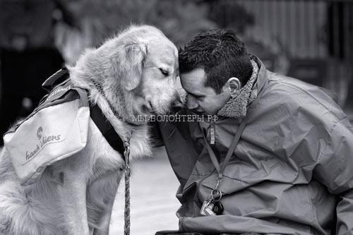 8.dog-love-photos