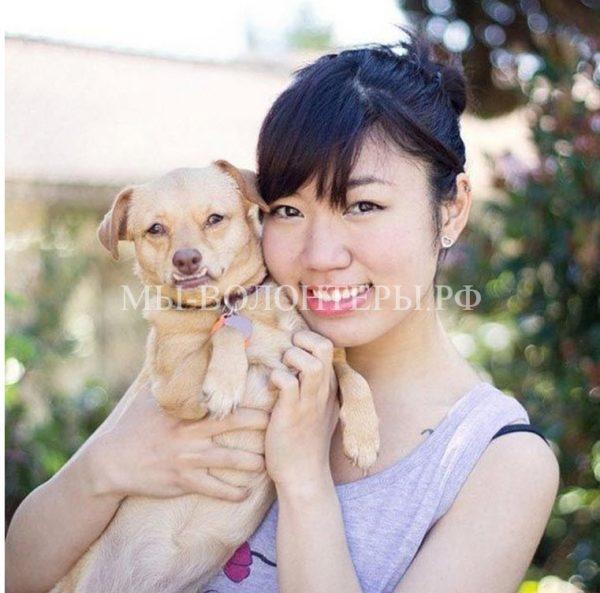 Собака-инвалид по кличке Дейзи, которую спасли от эвтаназии и подарили новую жизнь