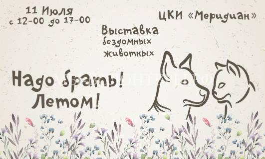 11 июля 2015, Москва в ЦКИ «Меридиан»: выставка бездомных собак и кошек «Надо брать! ЛЕТОМ!»