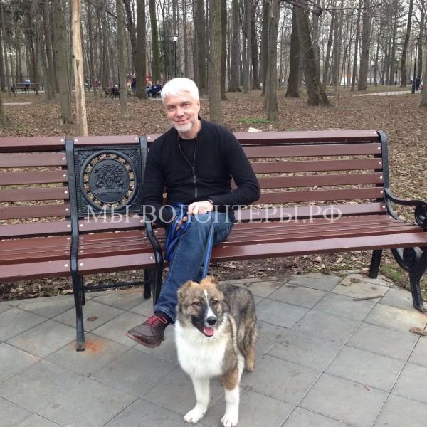 Интервью с Даниилом Матюхиным, директором  Управляющей компании приюта «Щербинка»
