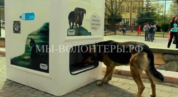 Инициатива Московского общества защиты животных
