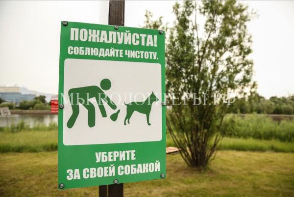 Волонтеры и полиция проконтролируют уборку за собаками в парках