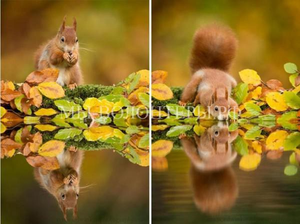 Осенняя природа