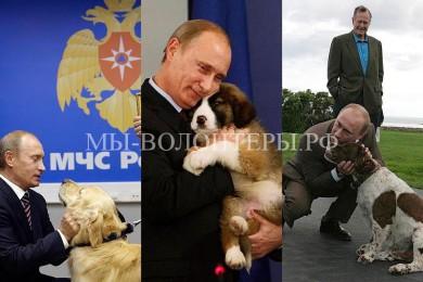 Собаки Президента Путина В.В., фотообзор