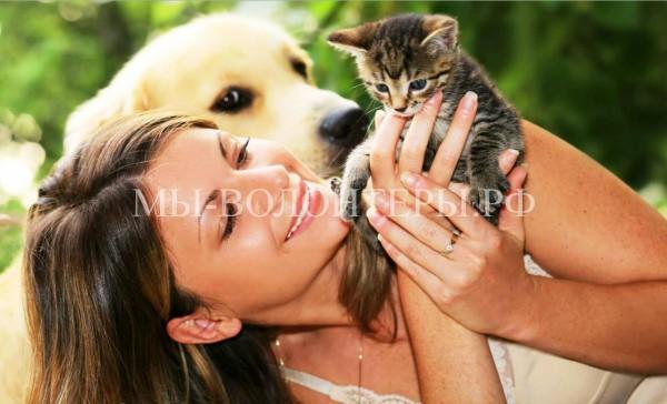 Зоотерапия: животные лечат болезни людей