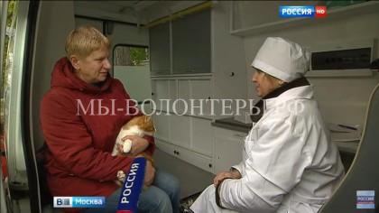 Карантин по бешенству животных объявлен в одном из районов центра Москвы