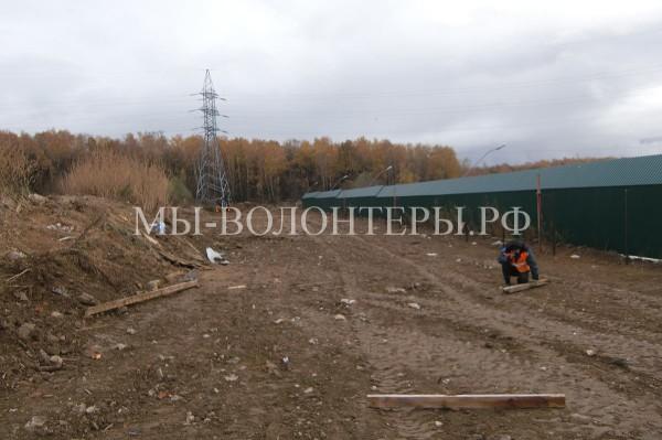 УК «Грин» строит площадку для выгула собак приюта «Щербинка»