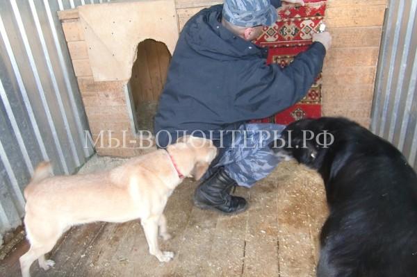 31 октября 2015 — субботник в приюте Щербинка по инициативе УК Грин
