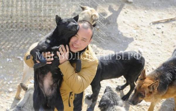 Китайский миллионер разорился, спасая собак, выкупая их у мясников