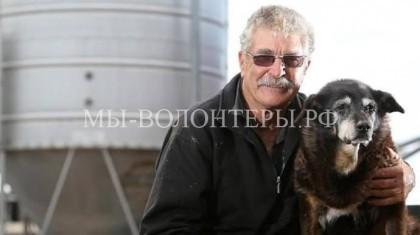 Самая старая собака в мире живет в Австралии