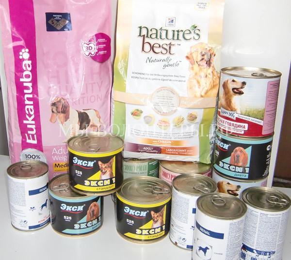 Спасибо зоомагазину «Зообудка» — за сухой корм и консервы для собак