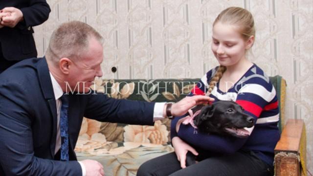 Путин подарил лабрадора2