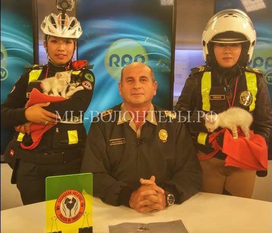 полицеские в Перу спасают собак2