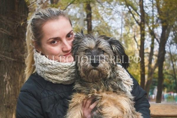 Волгоградец снял фильм о бездомных животных и неравнодушных людях, подаривших им свою любовь