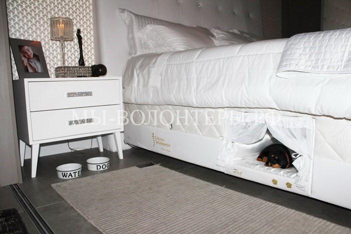 кровать для питомца2