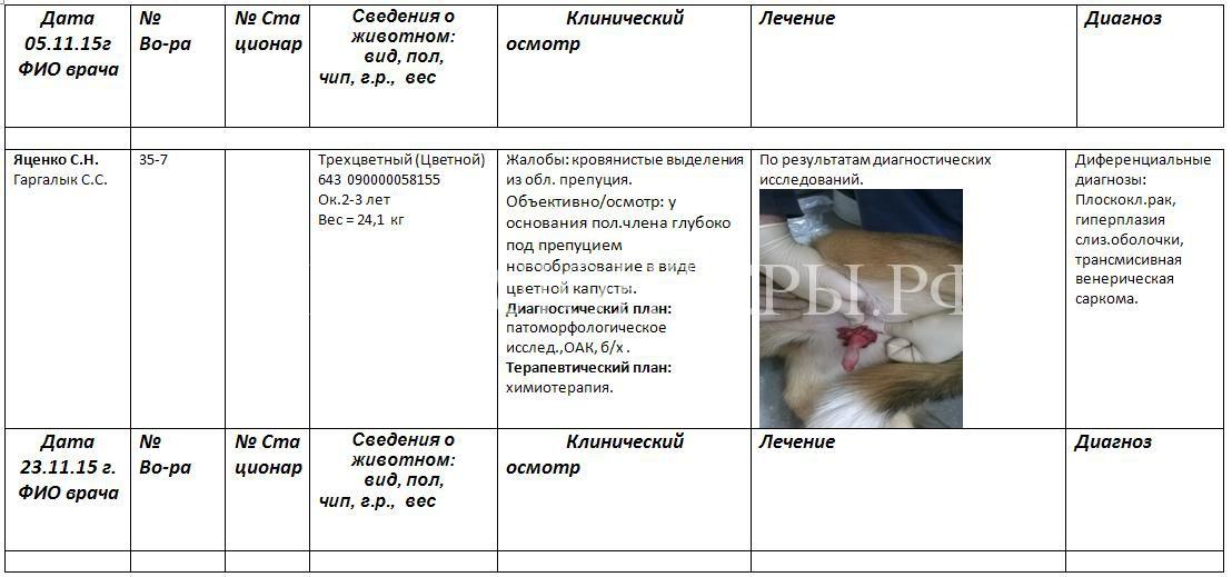 отравление-арчи-история-болезни-1