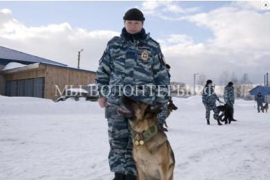 В Центре кинологической службы в Ярославле вручены награды служебной собаке