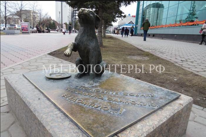 Памятник бездомным собакам в Тюмени1