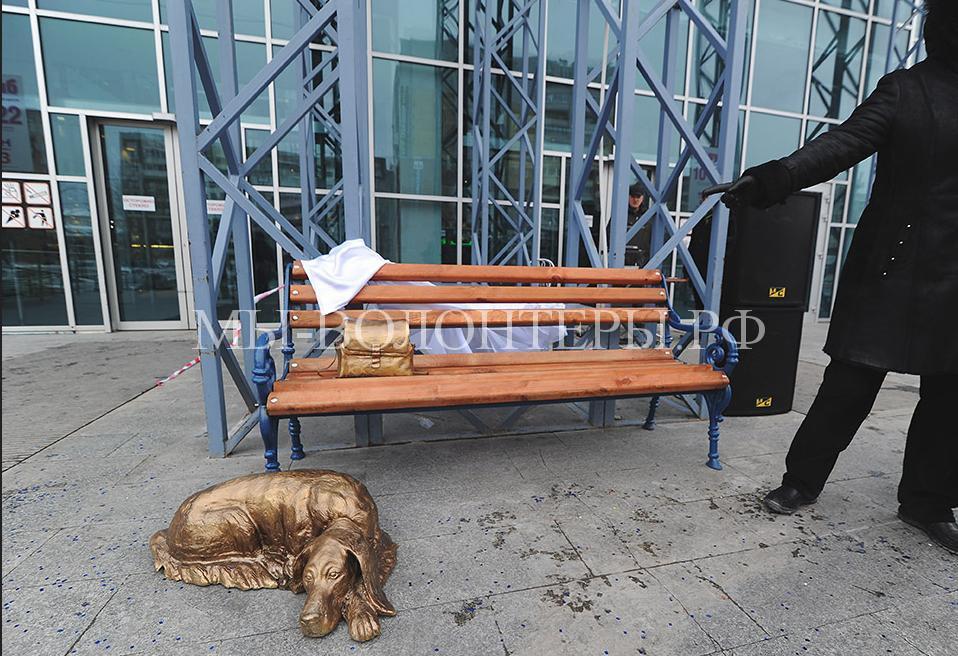 Памятник бездомным собакам в Тюмени2