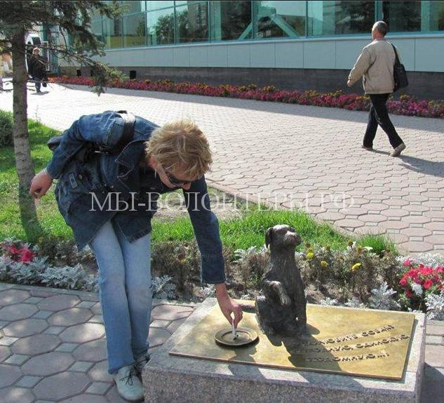 Памятник бездомным собакам в Тюмени4