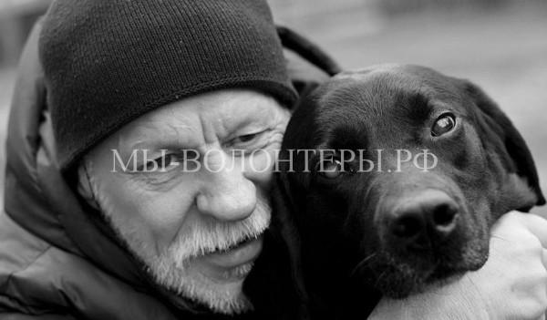 Слепой хозяин спас свою собаку-поводыря, также потерявшую зрение