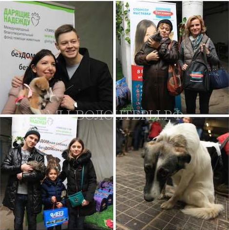 Итоги выставки «Домой!», которая прошла 19-20 марта в Москве