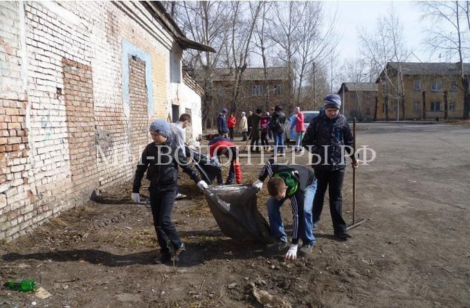 Первый приют для бездомных собак и кошек строится в Красноярске. Новый приют будет ориентирован на помощь животным-инвалидам