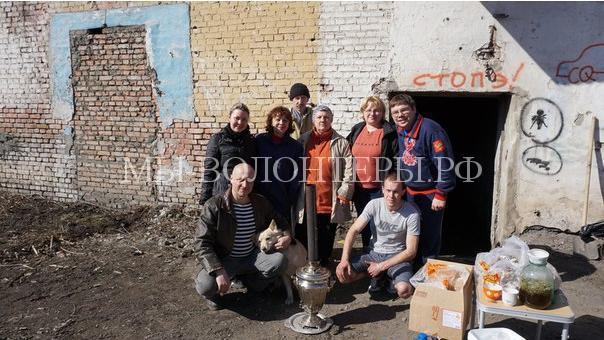 В Красноярске организуют первый приют для бездомных животных3