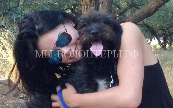 И в отпуск съездила, и собаку спасла: удивительная история, как бездомная собака обрела  семью