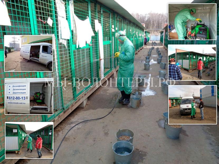 Сегодня в приюте Щербинка  проведена дезинфекционная обработка вольеров