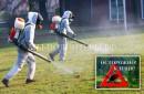 В приют Щербинка УК Грин завезены препараты против эктопаразитов и гельминтов