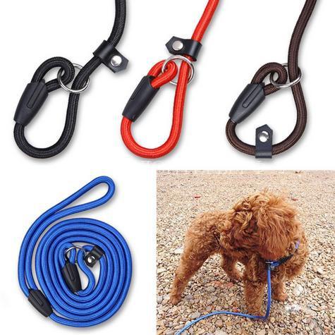 Как выбрать поводок для собаки9