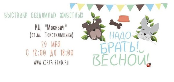 29 мая состоится выставка-раздача приютских животных «Надо брать весной!»