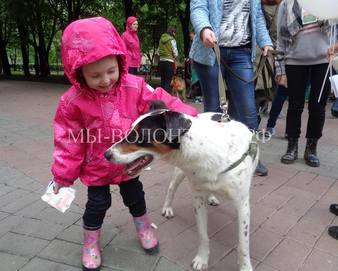 дети-и-собаки-всегда-друзья