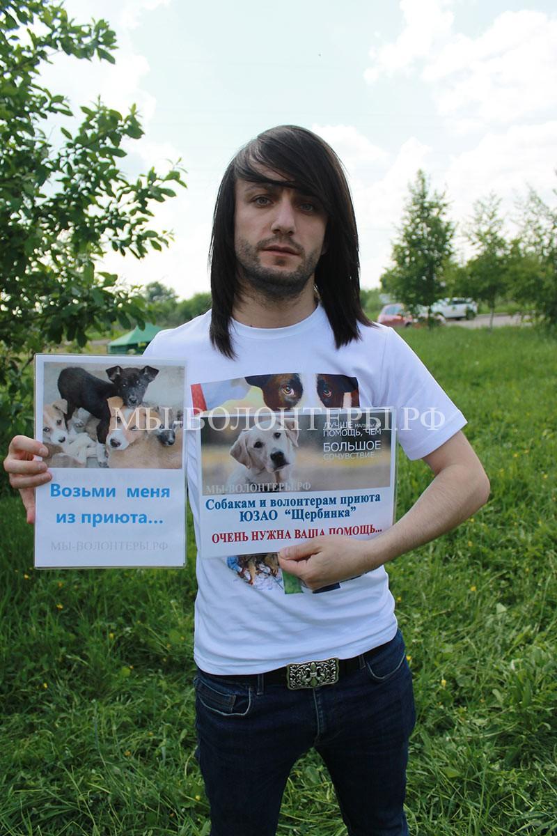 леван-тодуа-приют-щербинка-социальный-плакат