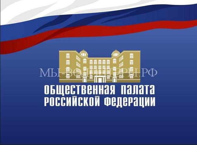 Прокуратура Москвы возбудила 43 административных дела, проверив 18 приютов для животных