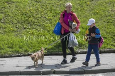 Выставка-пристройство приютских собак «Лапа дружбы» в Воронцовском парке