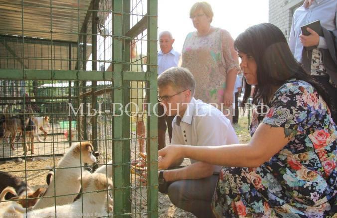 Мэр Рязани взял щенка из приюта3
