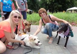 Тина и Нора представили приют Щербинка на выставке-ярмарке