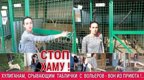 Волонтер Мария Гнетова — срыв табличек с опекаемых ею вольеров хулиганом Челкиной Натальей