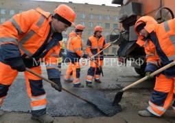 Муниципальные приюты Москвы планируют передать в ГБУ