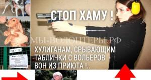 Хулиганский срыв табличек с вольеров приюта - почерк ранее судимой Челкиной Натальи
