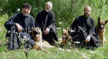 Овчарки-поводыри из монашеского скита