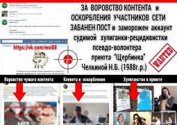 За воровство и клевету ВКонтакте забанил и заморозил аккаунт судимой Челкиной