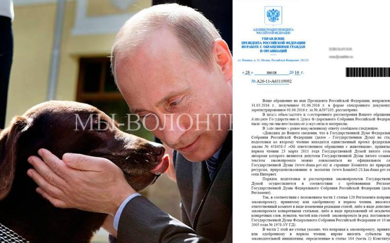 Ответ Путина В.В. на наше обращение по Закону Об ответственном обращении с животными