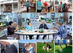 22.09.16 на канале НТВ в Студии Юлии Высоцкой — сюжет с волонтерами приюта Щербинка