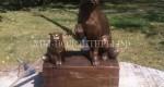 В Нижнекамске установили памятник бездомным животным