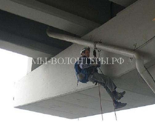 Спасение кошки с подвесной опоры моста